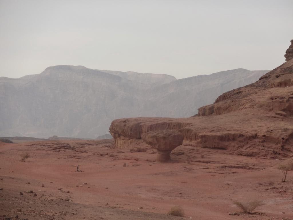 каменный гриб египет