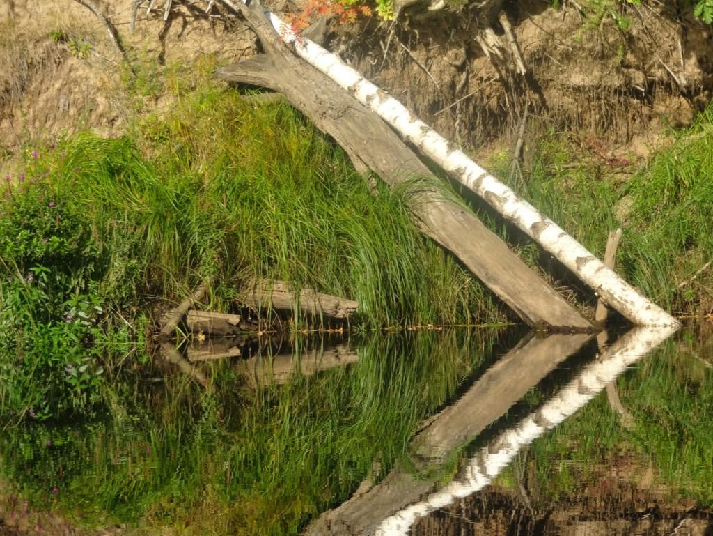 керженец зеркальная фотография