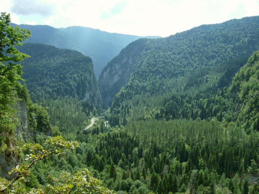 вид со смотровой площадки на Юпшарский каньон Абхазия