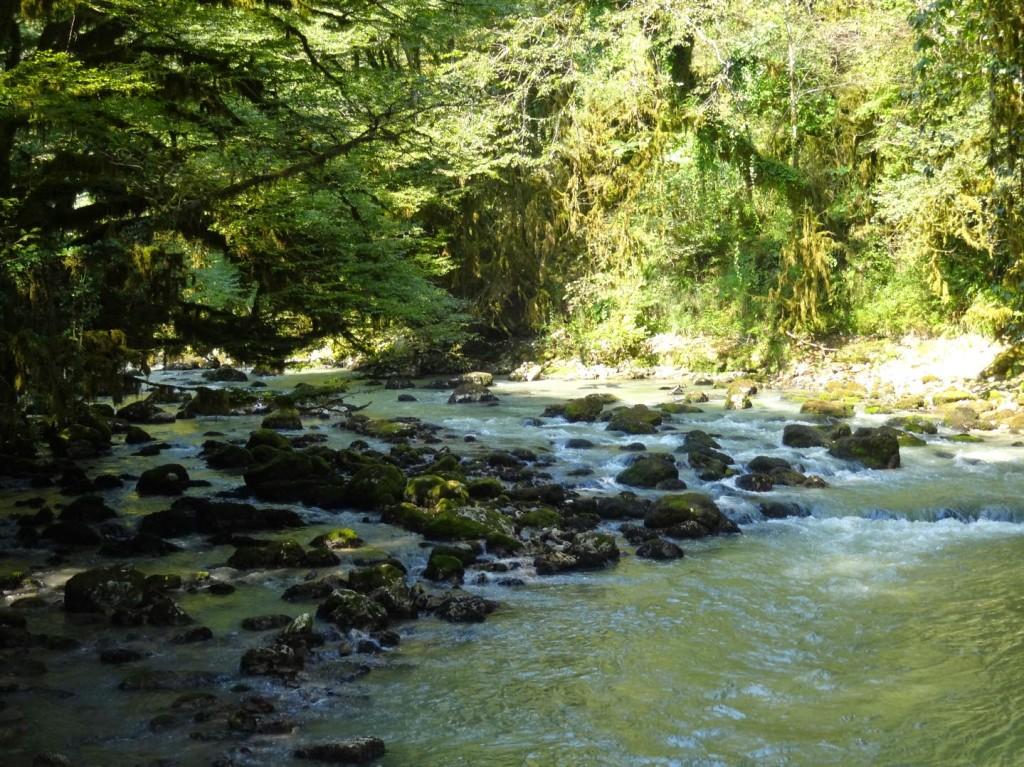 река Мчишта