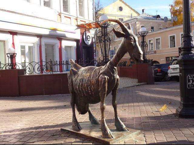 коза улица покровская