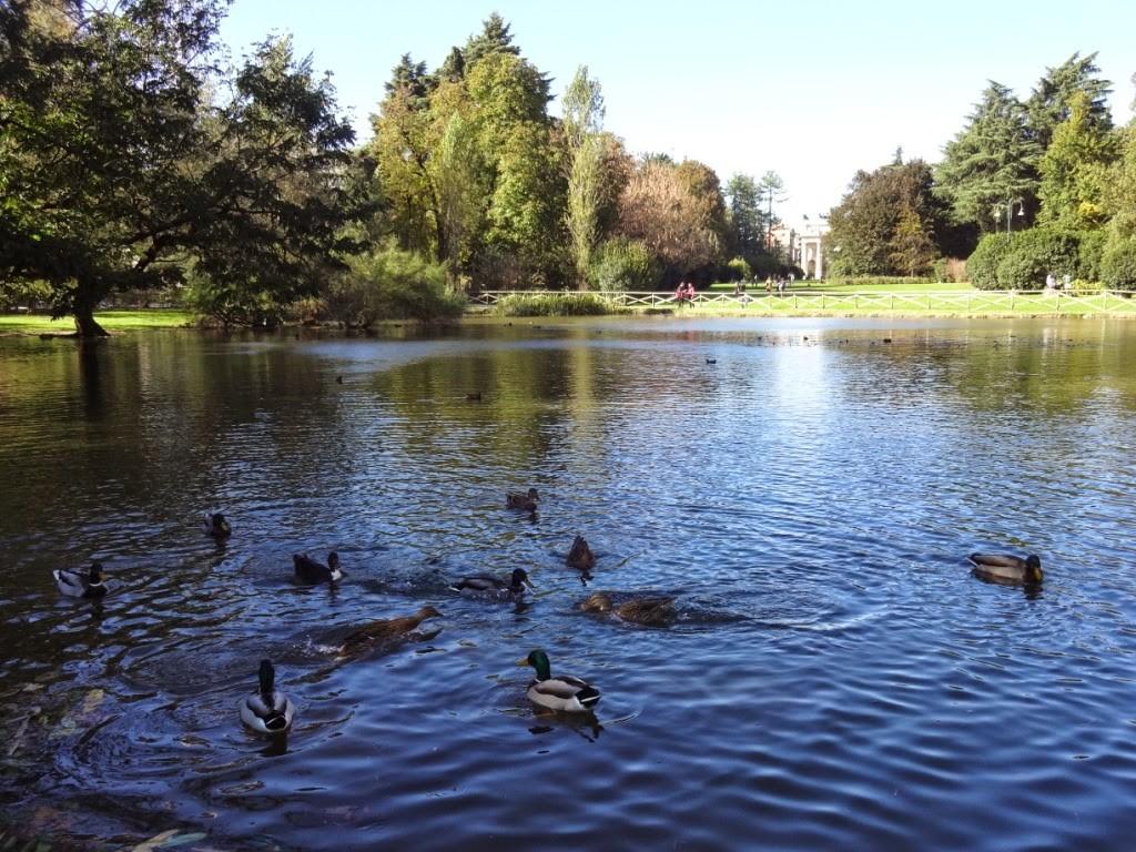 парк семпионе пруд милан