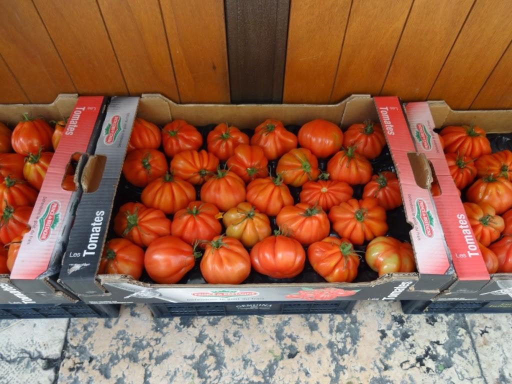 симпатичные помидоры италия