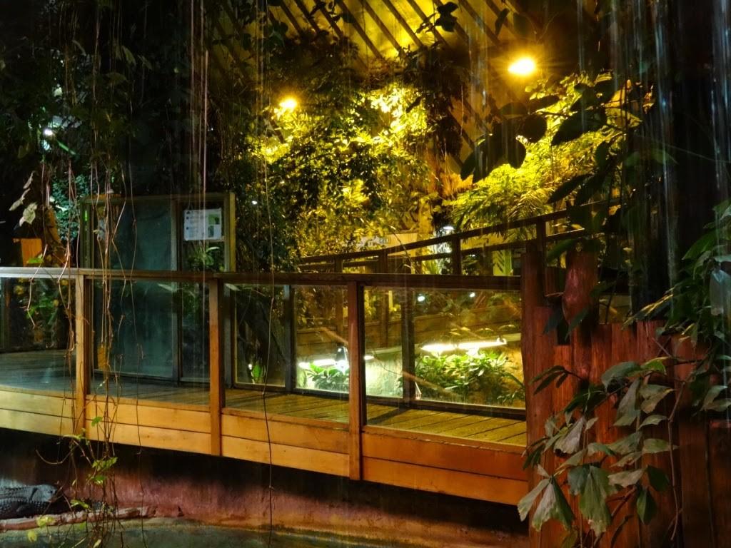 зоопарк в Риге тропический дом