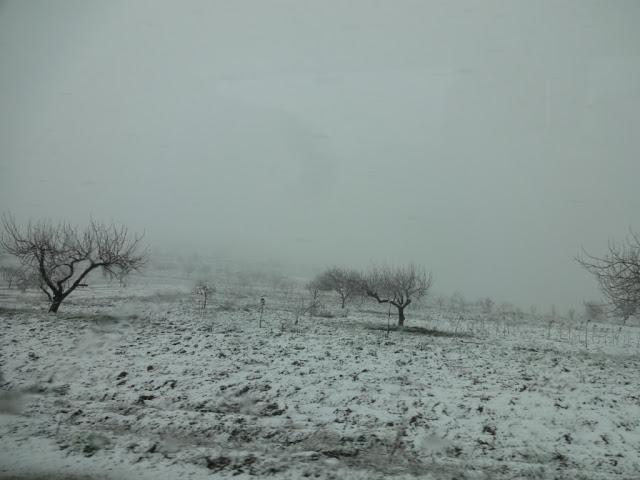 Из весны в зиму