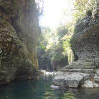 Мартвильский каньон или парк Юрского периода по-грузински