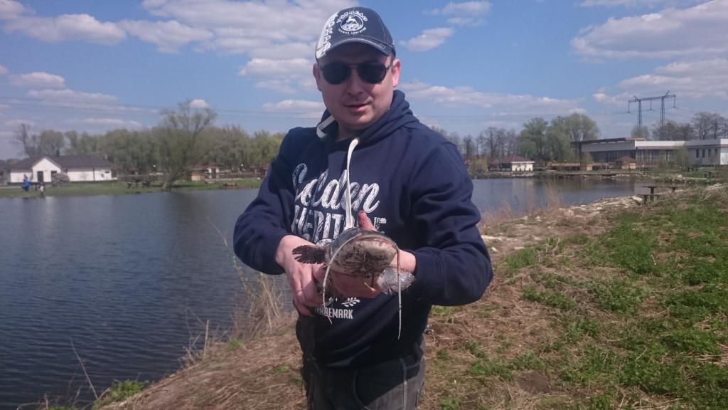 пойманный сом рыбак