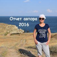 Отчет автора за 2016 год. Цели и задумки на 2017