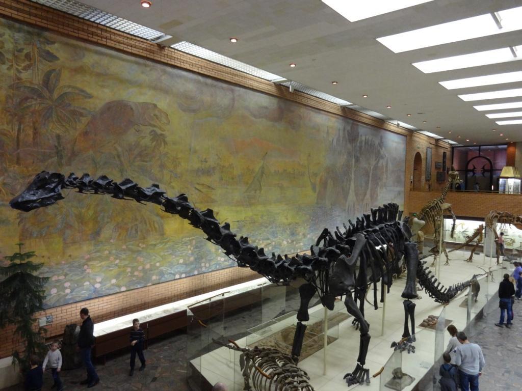 палеонтологический музей москва