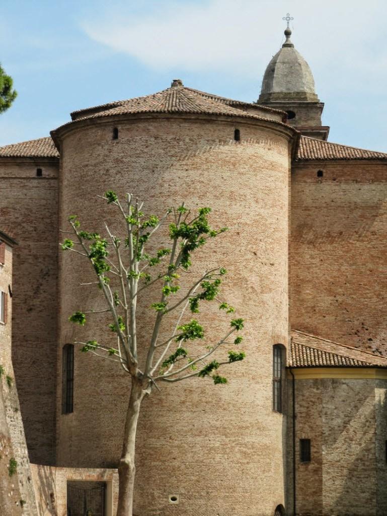 одинокое дерево замок сигизмондо Сантарканджело