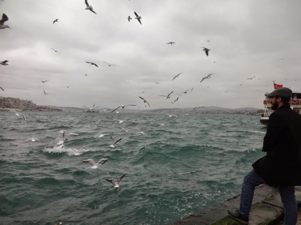босфор морская прогулка