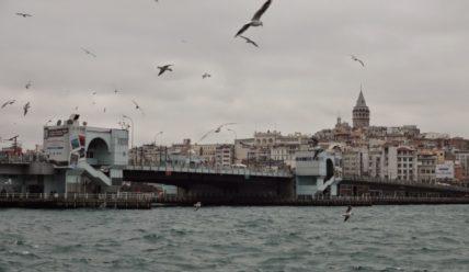 Что посмотреть в Стамбуле? День 1: Айя-София, Голубая мечеть, Дворец Топканы, Цистерна Базилика.