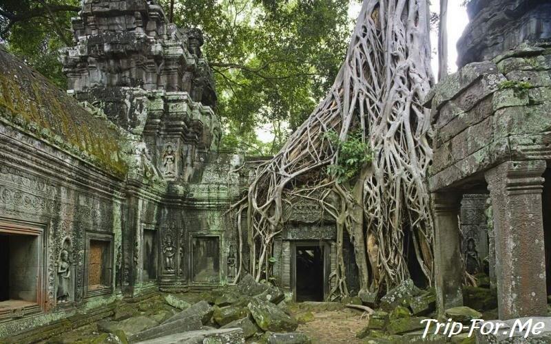 Ангко́р-Ват камбоджа