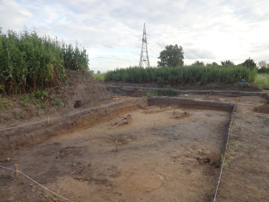 старорязанская археологичеякая экспедиция