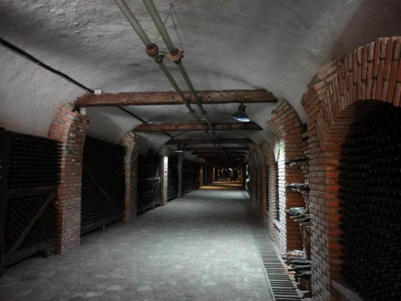 винный тоннель харебавинный тоннель хареба