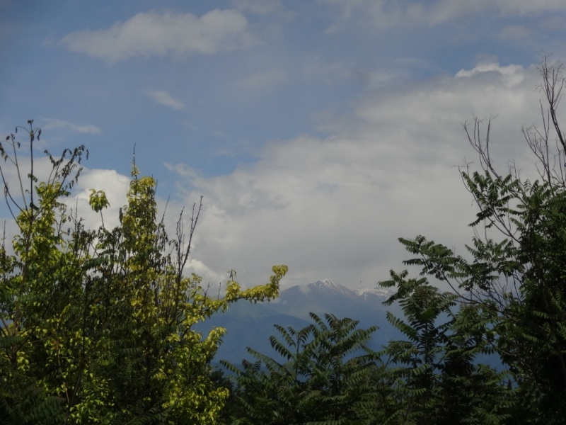 грузия горы
