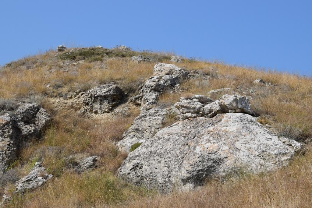каменный зоопарк казантипкаменный зоопарк казантип