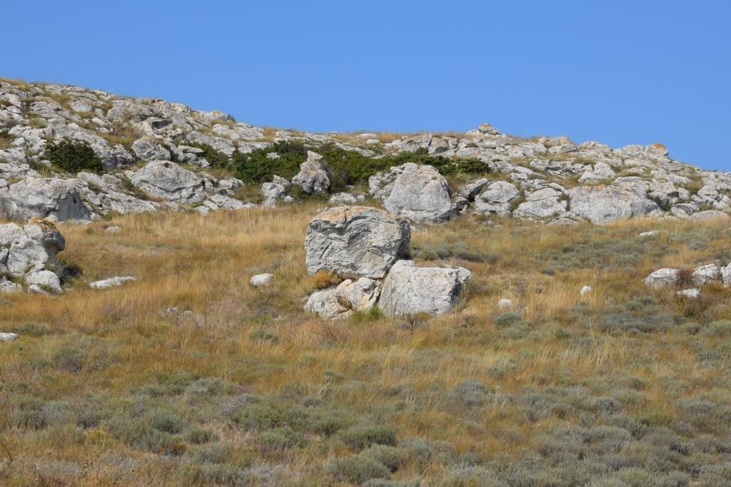 каменный зоопарк казантип