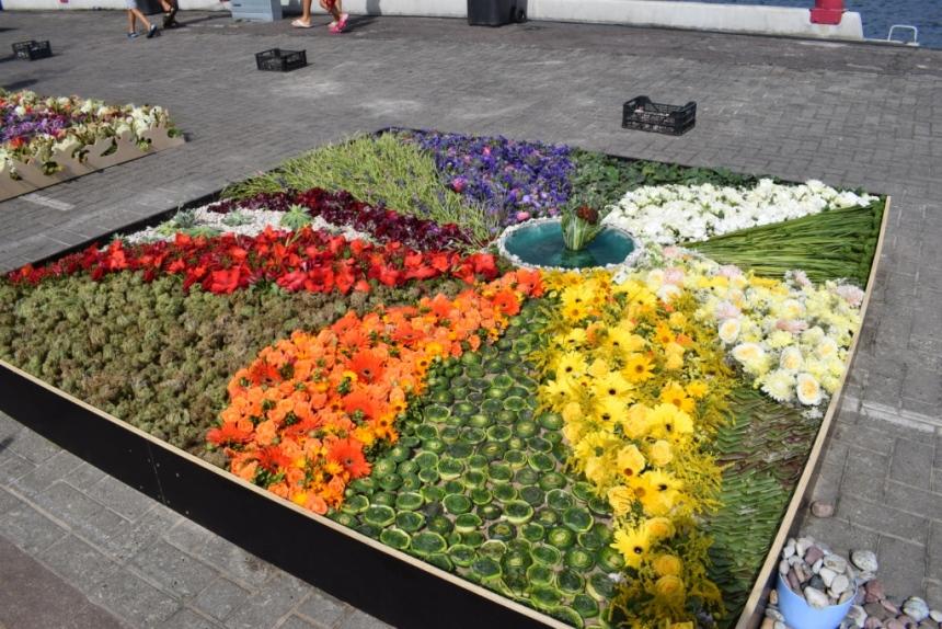 цветочный ковер вентспилс
