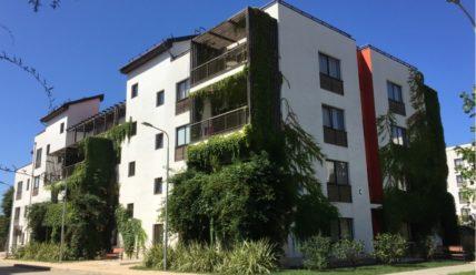 Парковый квартал в апарт-отеле Имеретинский. Личный отзыв