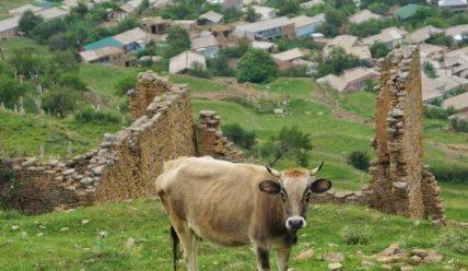 Как поехать в Дагестан самостоятельно? Готовый маршрут на 6 дней